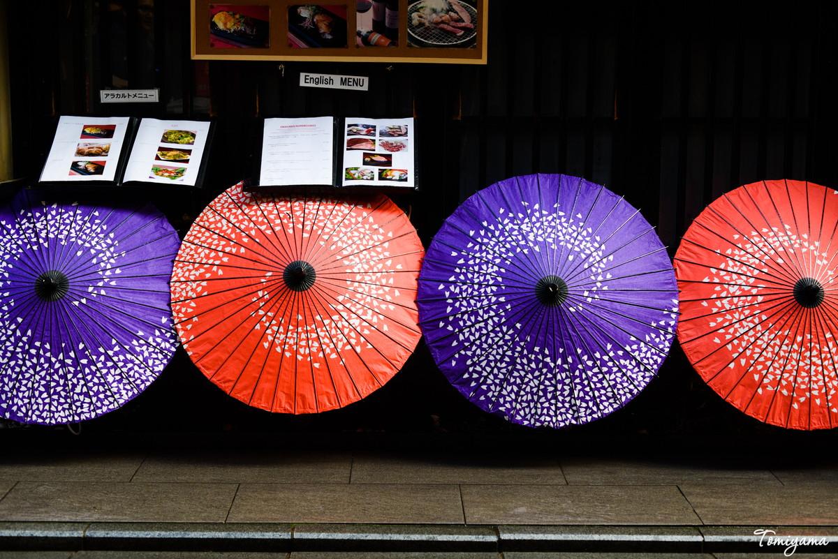【マクロプラナー】青春18きっぷで京都から宇治へ旅