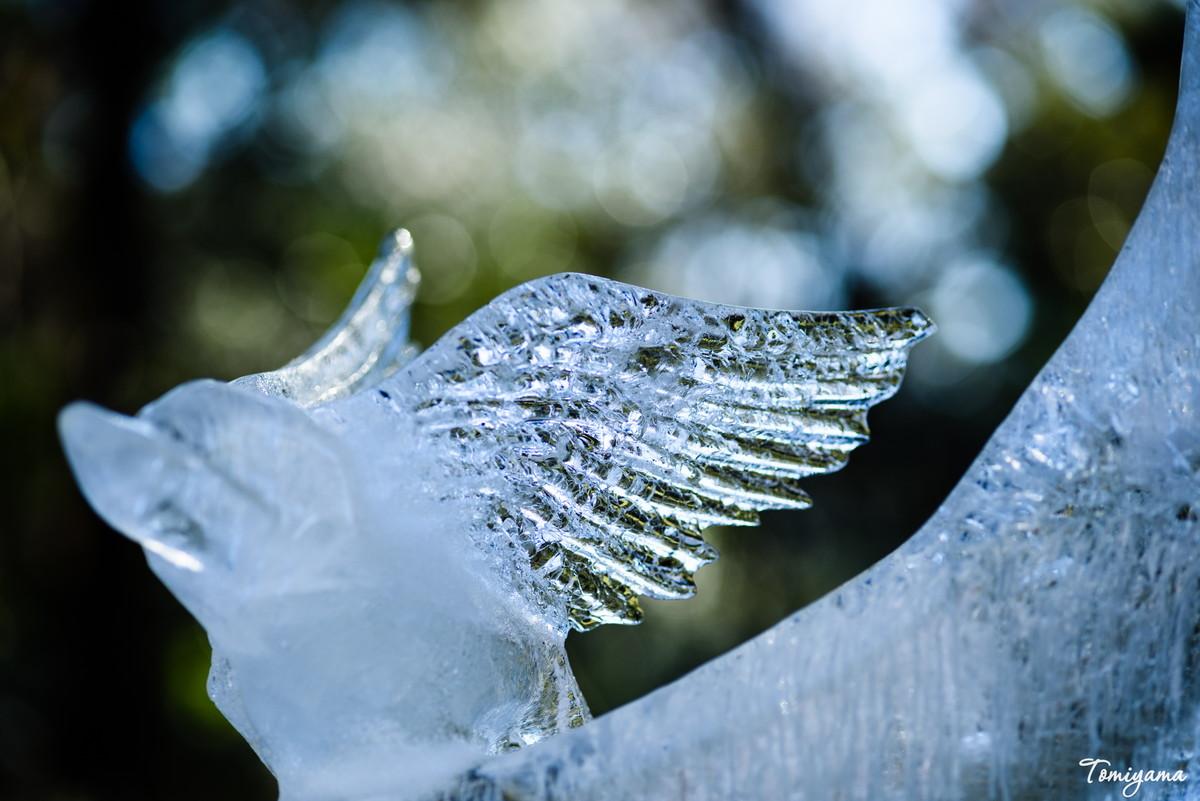 マクロプラナーで明治神宮の氷の彫刻を撮ってきました!
