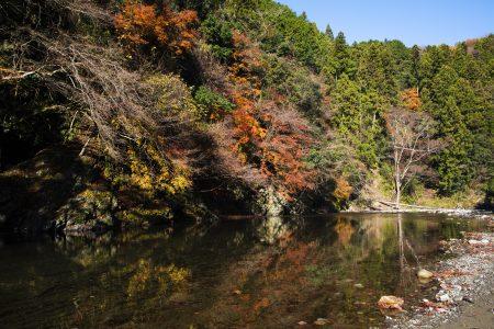 2019年の大垣の多良峡の紅葉